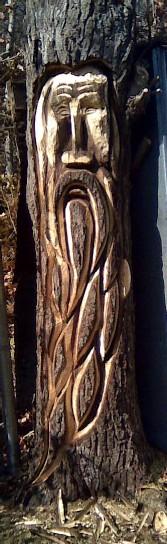 walnut_tree_wizard_cropforprint