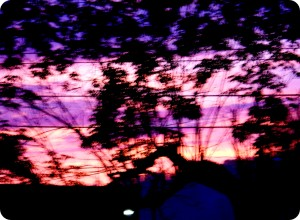 May Sunrise 2013 009