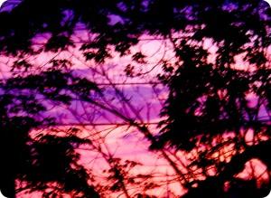 May Sunrise 2013 010