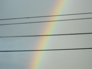 rainbow-may-2013 002