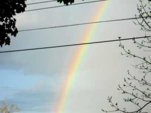rainbow-may-2013 007