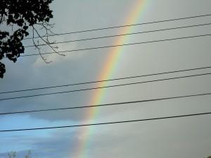 rainbow-may-2013 011