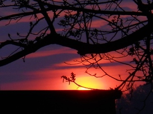 sunrise-may-9-2013 006