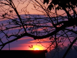 sunrise-may-9-2013 007