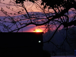 sunrise-may-9-2013 008