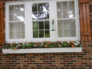 Dining Room Window Box