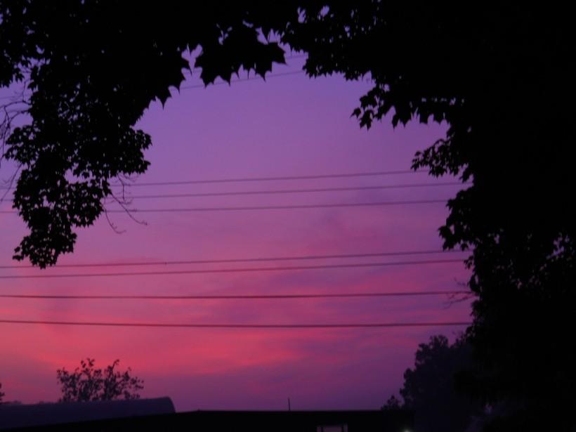 Dawn-sunrise-trees-July-18-2013