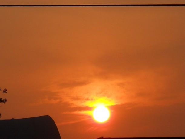 Golden Light-July-18-2013 002-sm