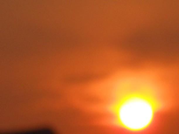 Golden Light-July-18-2013 003-sm