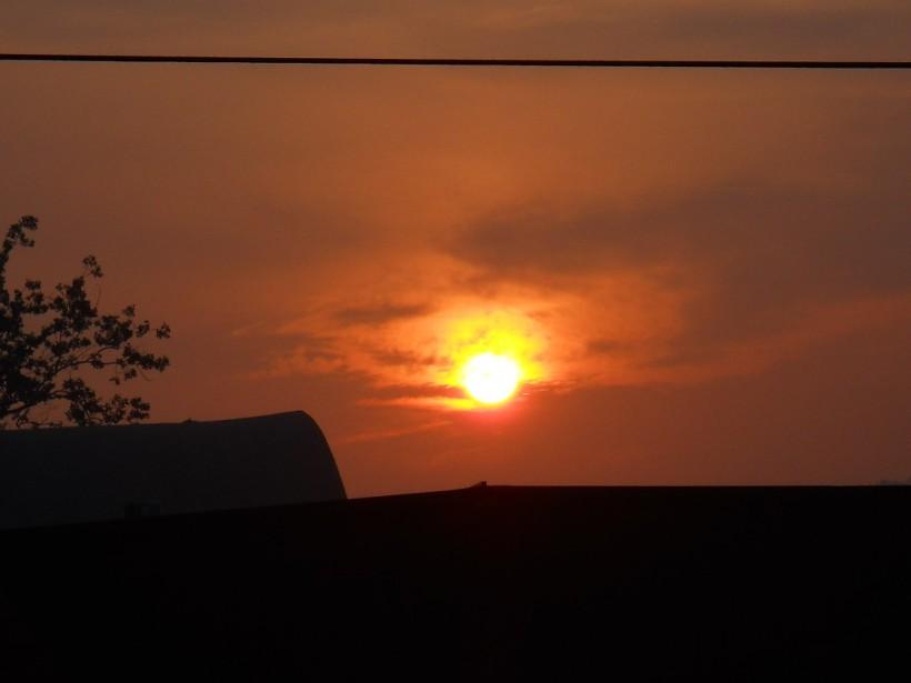 Golden Light-July-18-2013 005-sm