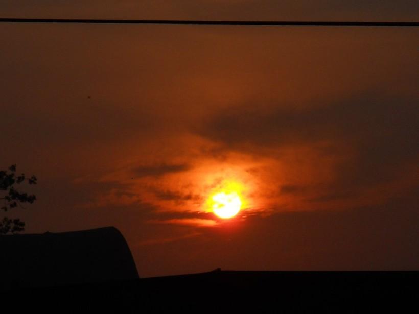 Golden Light-July-18-2013 006-sm