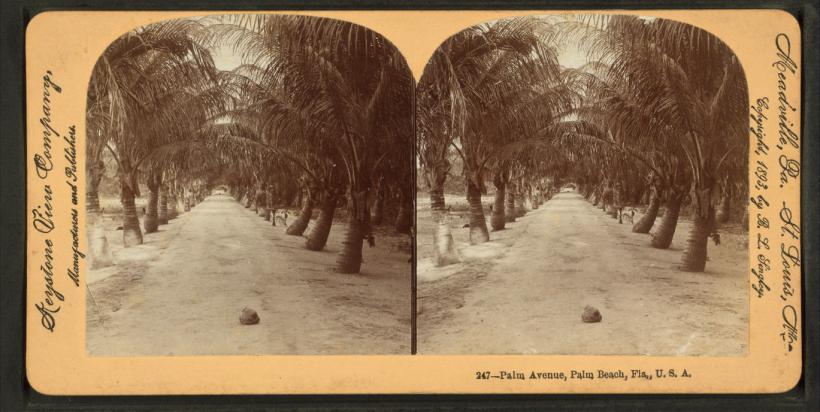 Palm Beach-past