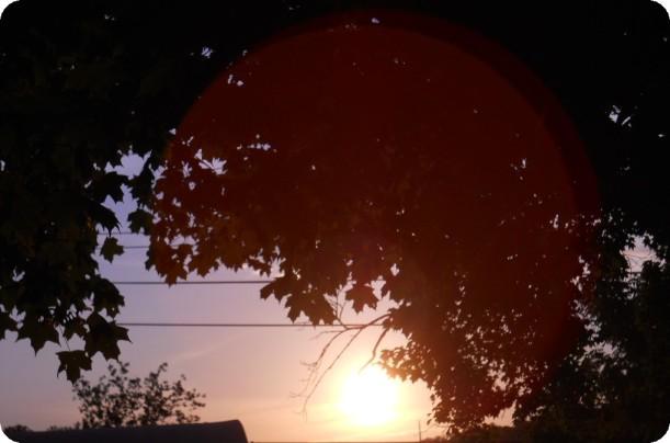 Sun Glow -7-24-13