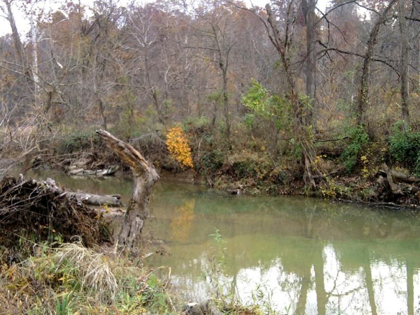 Autumn-2013-3-creek