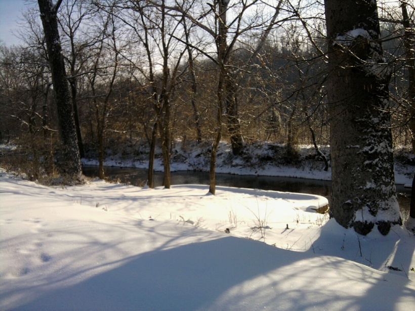 Snowy Creek Bank