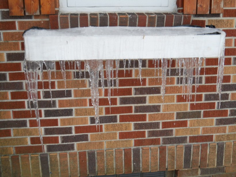 icicles 006
