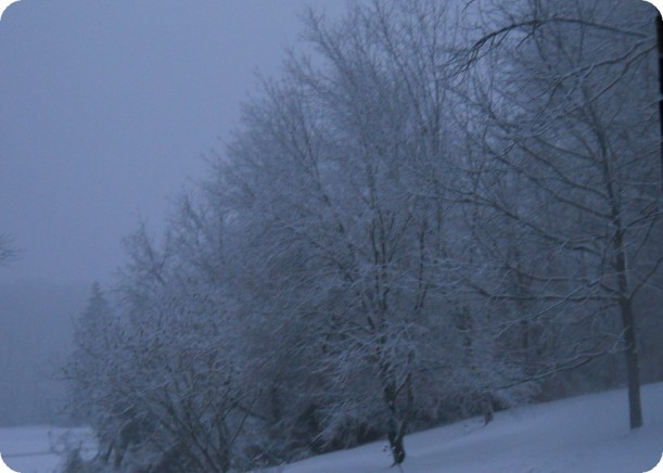 snow and ice 007