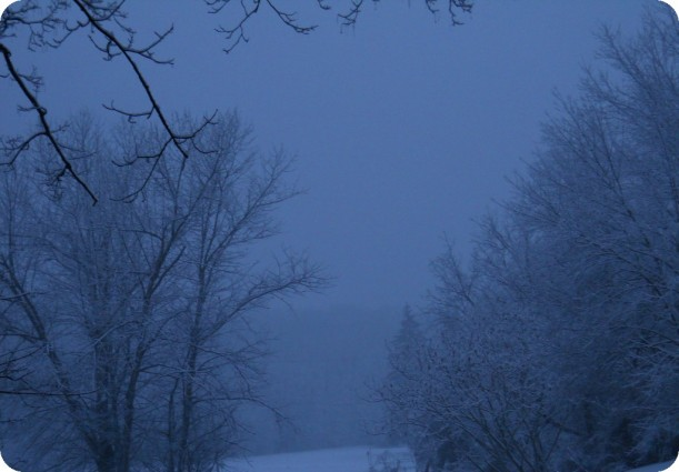 snow and ice 008
