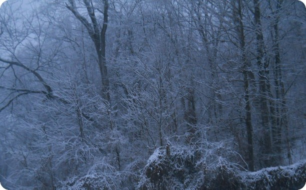 snow and ice 011