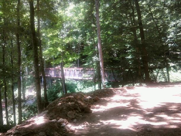 Bridge over Ravine