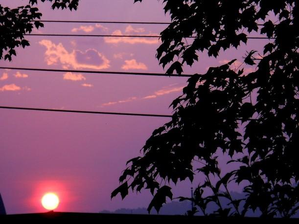 sunrise-7-23-14-7