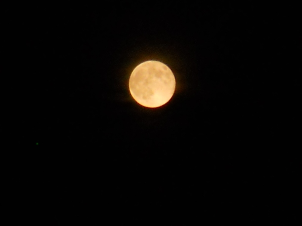 Super Moon-8-11-14 003