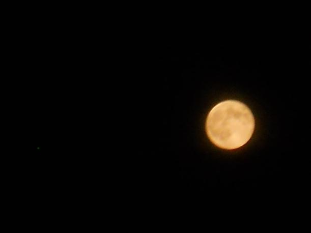 Super Moon-8-11-14 009