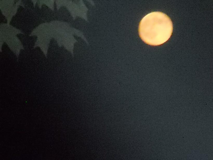 super moon- 8-11-14-2