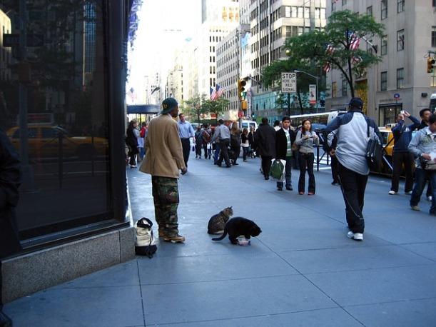 manhattan-new-york-city-street-new-york-city