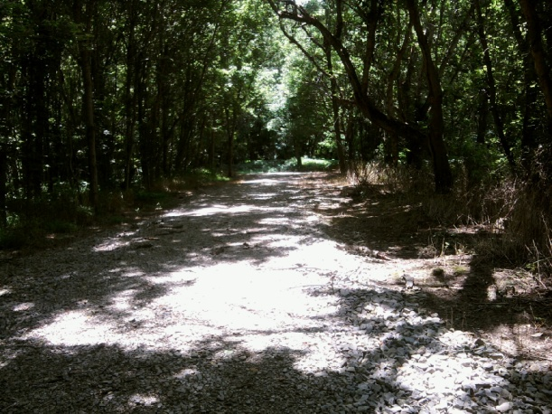 Hayswood Nature Preserve